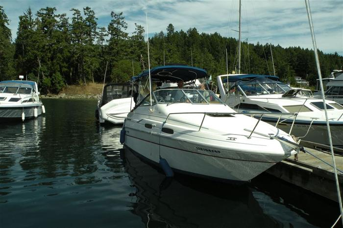 1993 Sea Ray Sundancer 230 - COQUITLAM